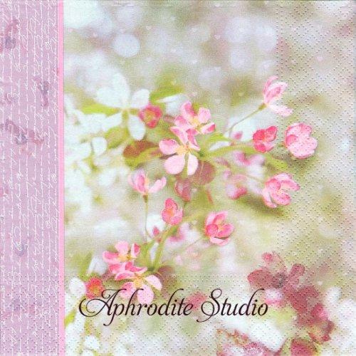 Infinity ピンク 写真 可憐な花 1枚 バラ売り 33cm ペーパーナプキン PAPSTAR
