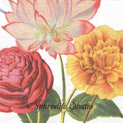ピップスタジオ Royal お花 1枚 バラ売り 33cm ペーパーナプキン PIP STUDIO