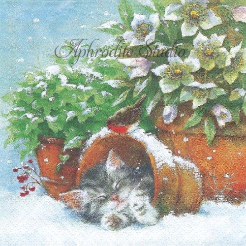 1パック20枚 Kitten sleeping in Plant Pot 植木鉢の中で眠る子猫 クリスマス 33cm ペーパーナプキン ti-flair