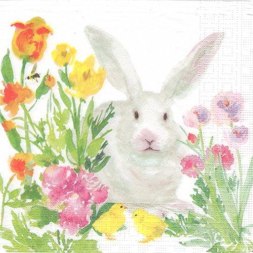1パック20枚 廃盤 Oh, so Bunny! 花のまにまに兎 ラビット うさぎ イースター Martha Collins 33cm ペーパーナプキン ppd