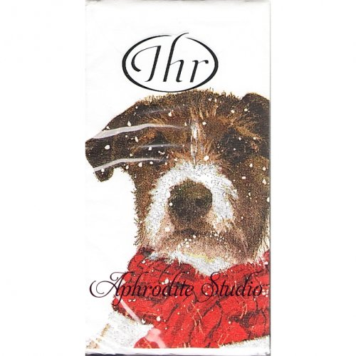 1パック10枚入 21cm角 ARCHIE 赤いマフラーの犬 クリスマス ポケットペーパーハンカチ 紙ハンカチ Ihr