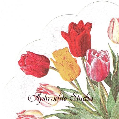 34cm TULIPS white 1枚 バラ売り サークル スカラップ型ペーパーナプキン Ihr