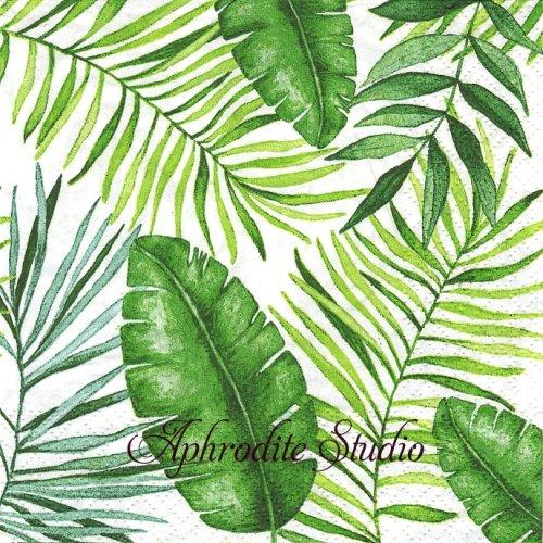 Jungle Leaves ジャングルの植物 1枚 バラ売り 33cm ペーパーナプキン Atelier
