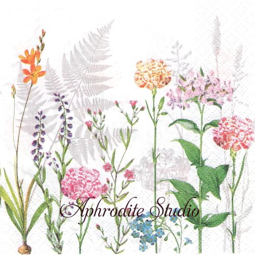Botanica 草花1枚 バラ売り 33cm ペーパーナプキン Atelier