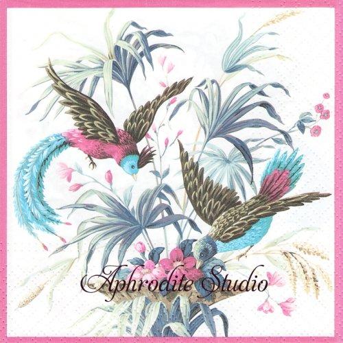 Birds of Eden 楽園の鳥 1枚 バラ売り 33cm ペーパーナプキン Paw