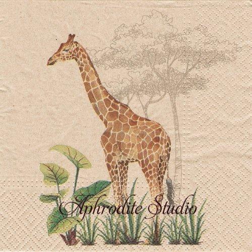 We Care Giraffe キリンと網目模様 1枚 バラ売り 33cm ペーパーナプキン Paw