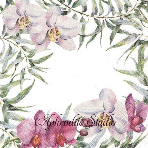 Elegant Orchid エレガントオーキッド 蘭の花 1枚 バラ売り 33cm ペーパーナプキン TETEaTETE