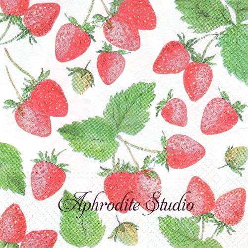 Fresh Strawberry 苺 ストロベリー 1枚 バラ売り 33cm ペーパーナプキン Paw