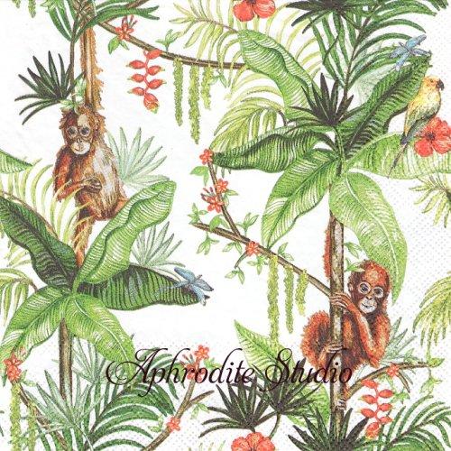 Orangutan White 1枚 バラ売り 33cm ペーパーナプキン Ambiente
