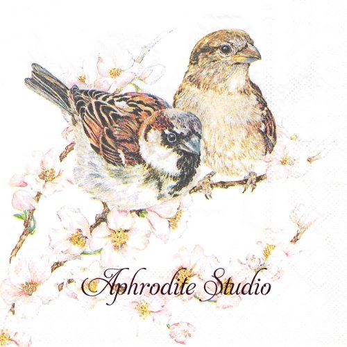 Sparrows Blossom 小鳥と桜 1枚 バラ売り 33cm ペーパーナプキン Ambiente