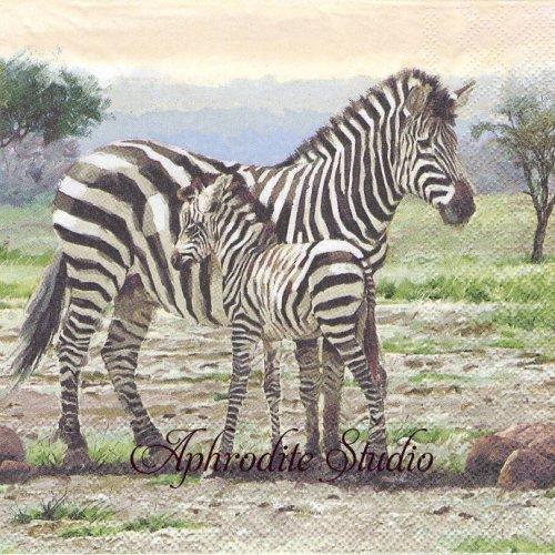 Zebras 親子のシマウマ 1枚 バラ売り 33cm ペーパーナプキン Ambiente