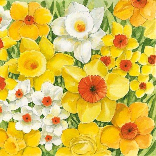 Signs Of Spring 1枚 バラ売り 33cm ペーパーナプキン Ihr