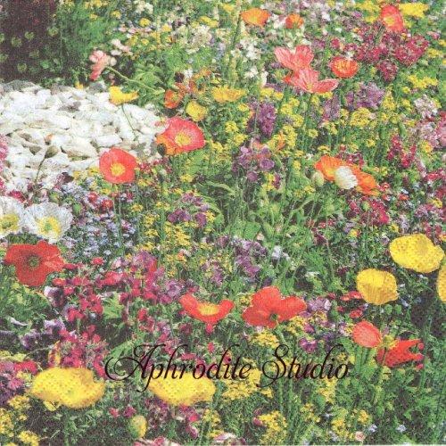Wildflowers  春の野の花 1枚 バラ売り 33cm ペーパーナプキン Ambiente