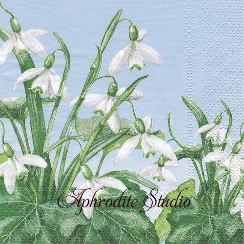 Snowdrops 花 1枚 バラ売り 33cm ペーパーナプキン Ambiente