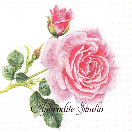Rosedal 薔薇 1枚 バラ売り 33cm ペーパーナプキン ppd