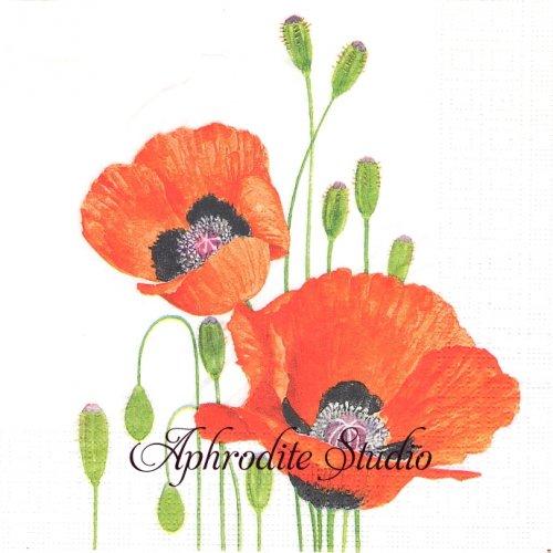 Poppies 1枚 バラ売り 33cm ペーパーナプキン ppd