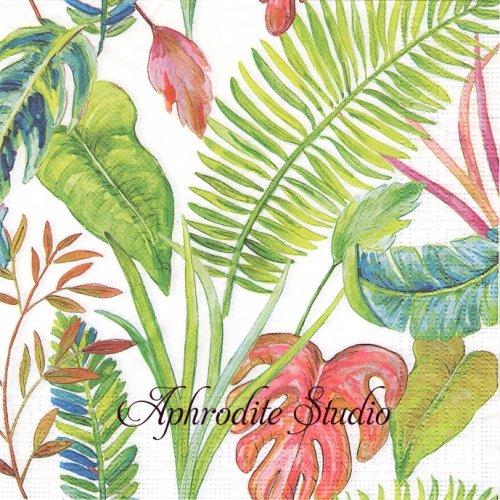 Paradise 1枚 バラ売り 33cm ペーパーナプキン ppd