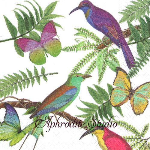 <img class='new_mark_img1' src='https://img.shop-pro.jp/img/new/icons14.gif' style='border:none;display:inline;margin:0px;padding:0px;width:auto;' />Tropical Birds トロピカルバード 南国の蝶と鳥1枚 バラ売り 33cm ペーパーナプキン Nouveau