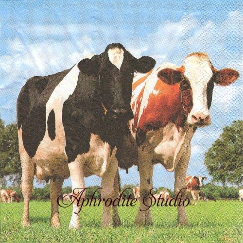 写真 COWS 2頭の牛 1枚 バラ売り 33cm ペーパーナプキン Ambiente