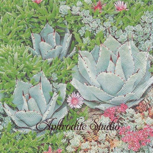 写真 Succulent 多肉植物 1枚 バラ売り 33cm ペーパーナプキン Ambiente