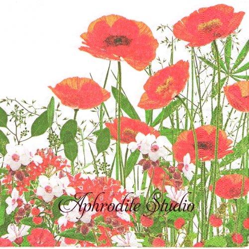 写真 Red meadow 紅いお花 1枚 33cm  バラ売り ペーパーナプキン Paper+Design