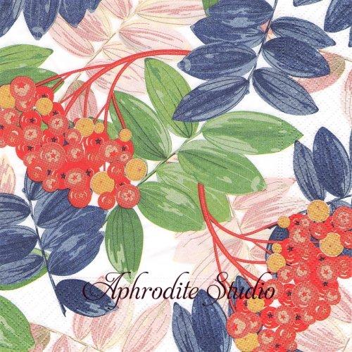 Fall Beauty 秋の木の実 1枚 33cm  バラ売り ペーパーナプキン Paper+Design