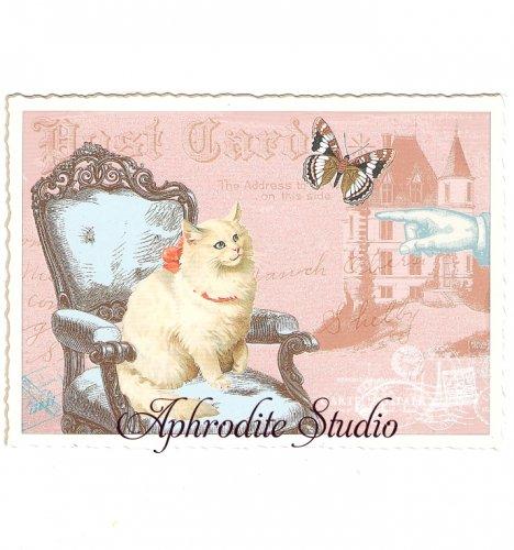 ヴィクトリアン ポストカード 『White Cat』 葉書 ハガキ カード