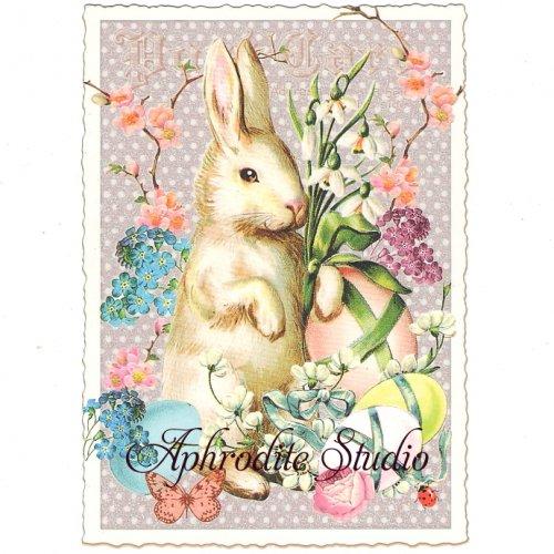 ヴィクトリアン ポストカード 『Easter Rabbit with Eggs』 葉書 ハガキ カード
