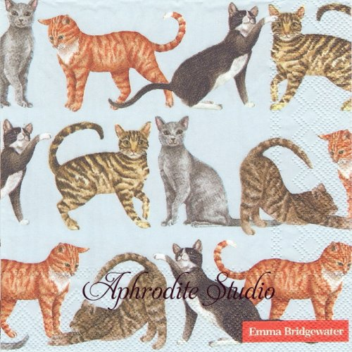 エマ・ブリッジウォーター CATS Emma Bridgewater 1枚 バラ売り 33cm ペーパーナプキン Ihr
