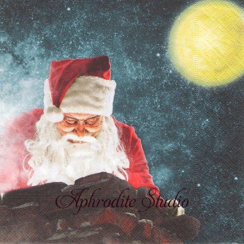 Peeping Santa 月夜の読書 サンタクロース クリスマス1枚 33cm  バラ売り ペーパーナプキン Paper+Design
