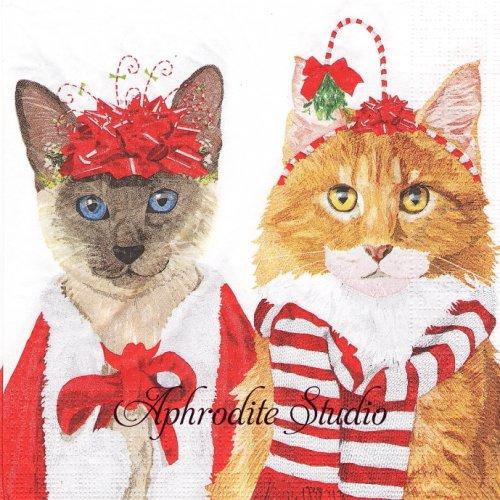 Festive Felines パーティーに行く2匹の猫 クリスマス1枚 33cm  バラ売り ペーパーナプキン ppd