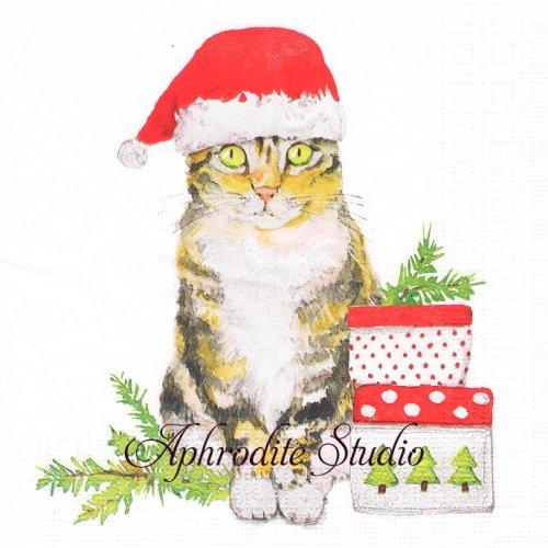 Christmas Kitty サンタ帽子の猫 クリスマス1枚 33cm  バラ売り ペーパーナプキン ppd