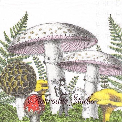 Mushrooms きのことおじさん妖精1枚 33cm  バラ売り ペーパーナプキン ppd