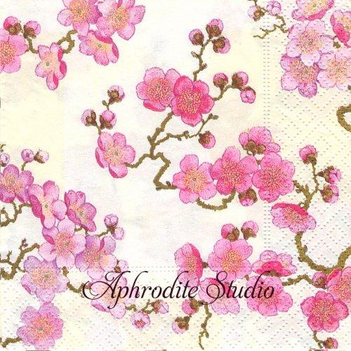 25cm カスパリ Plum Blossom パール 梅  1枚 バラ売り ペーパーナプキン  Caspari