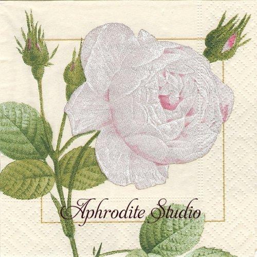 25cm カスパリ Redoute rose ホワイト ルドゥーテの薔薇  1枚 バラ売り ペーパーナプキン  Caspari