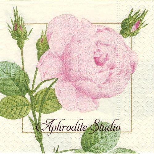 25cm カスパリ Redoute rose ピンク ルドゥーテの薔薇  1枚 バラ売り ペーパーナプキン  Caspari