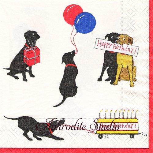 カスパリ SLOBBER'S BIRTHDAY レトリーバー 犬  1枚 バラ売り 33cm ペーパーナプキン  Caspari