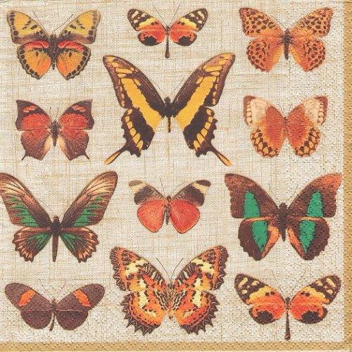 カスパリ 廃盤 DEYROLLE BUTTERFLIES リネン 蝶の標本 1枚 バラ売り 33cm ペーパーナプキン Caspari