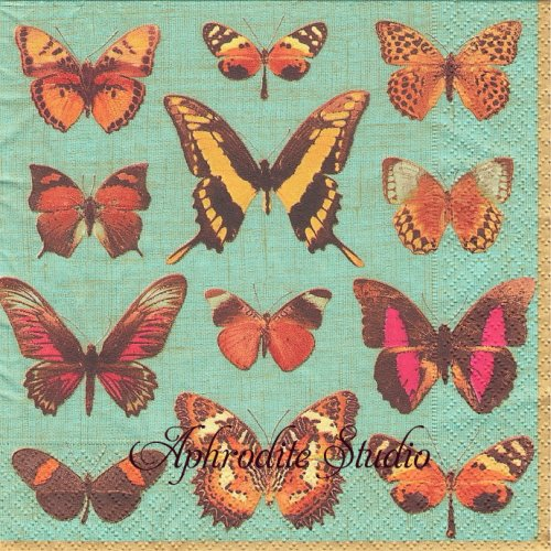 カスパリ 廃盤 DEYROLLE BUTTERFLIES ターコイズ 蝶の標本 1枚 バラ売り 33cm ペーパーナプキン Caspari
