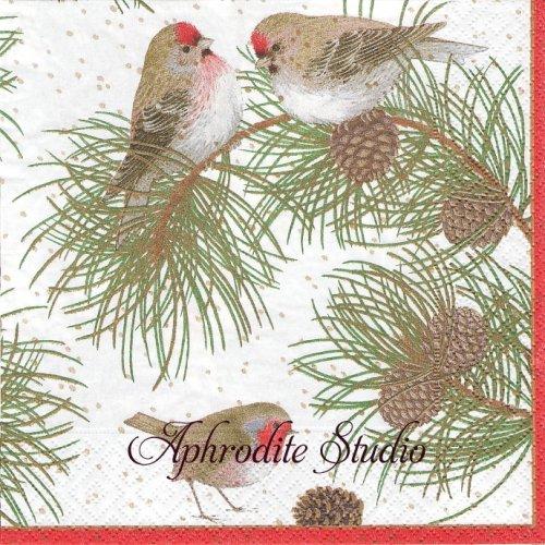 カスパリ 廃盤 WOODLAND BIRDS クリスマス 小鳥 1枚 バラ売り 33cm ペーパーナプキン Caspari