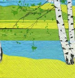 北欧 24cm マリメッコ KAIKU カイクー 白樺の風景 1枚 ペーパーナプキン marimekko