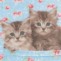 廃盤 Romeo & Julia 子猫 ロミオ&ジュリエット 写真 1枚 バラ売り 33cm ペーパーナプキン デコパージュ 紙ナプキン Paper+Design