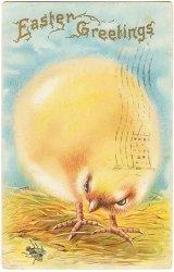 虫を狙う大きなひよこ*Easter Greetings*アンティークポストカード*イースター*葉書