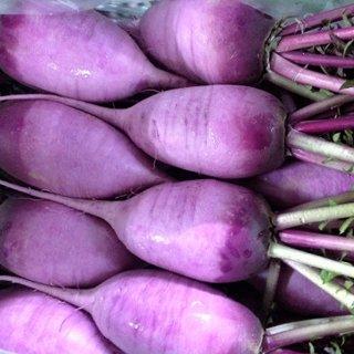 紫大根  地物