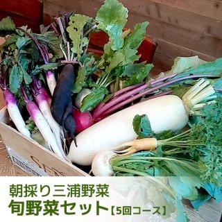 朝採り旬の三浦野菜セット<br>【5回コース】