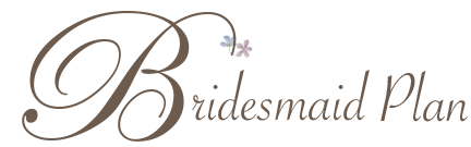 bridesmaid-rentalplan