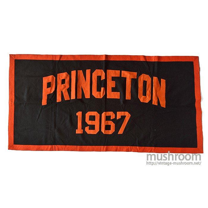 PRINCETON UNIV FELT BANNER