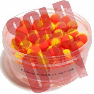 5. BANANA & SCOPEX  POP UPS 10mm