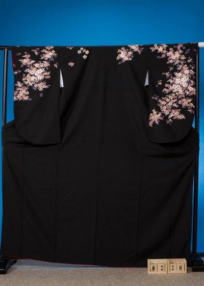 S220小振袖レンタル 裄70(ヒップ107まで)黒 小桜