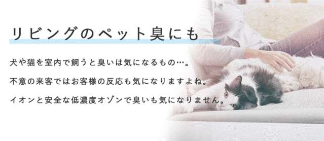 <img class='new_mark_img1' src='https://img.shop-pro.jp/img/new/icons14.gif' style='border:none;display:inline;margin:0px;padding:0px;width:auto;' />Air Success/エアーサクセス Air Success POCKET